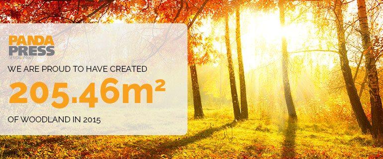 Between January and December, Panda Press has created 205.46 m² of woodland