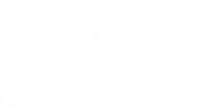 Panda Press Logo in White.